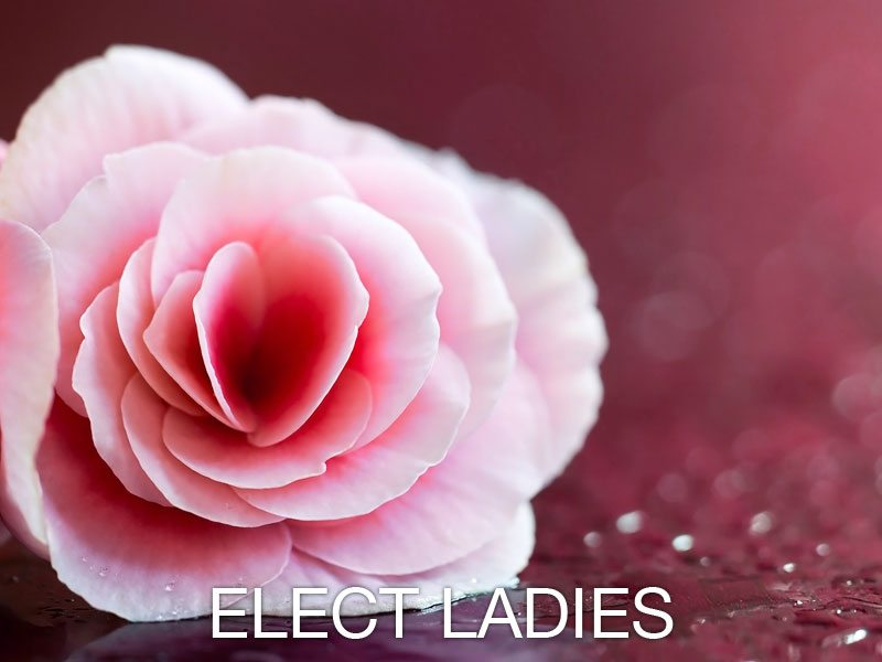 Elect Ladies - Women's Ministry